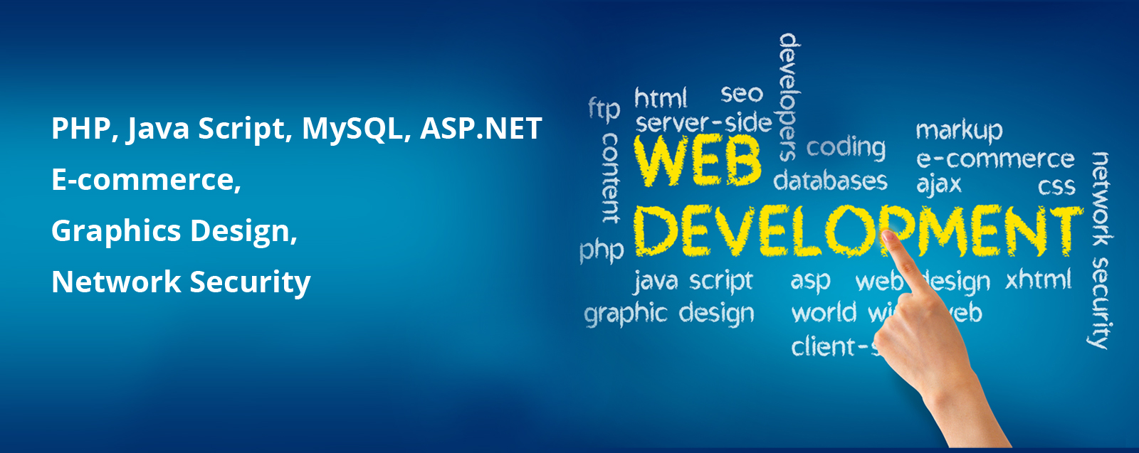 WEB and SOFTWARE